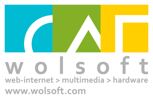 Wolsoft Logo
